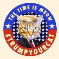 Y con una campaña de ponerle el copete de Trump a las mascotas Foto:Instagram.com/