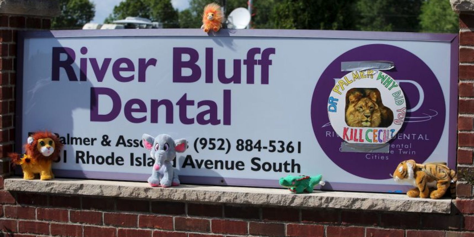 También hay muñecos de peluche de diversas especies de animales cazados Foto:Getty Images