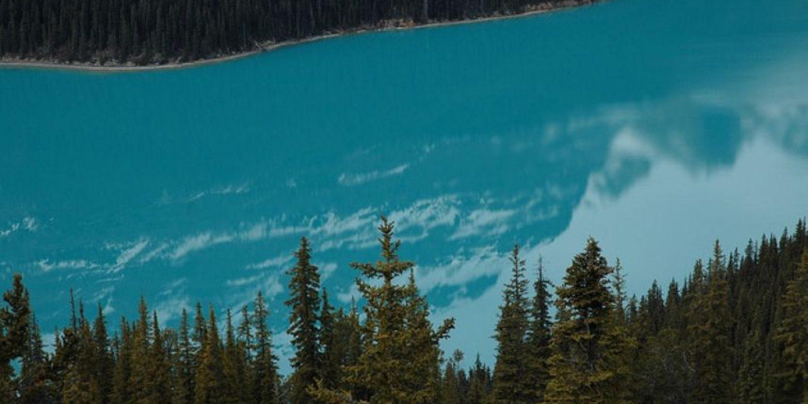 Lago Peyto, Canadá Foto:Wikimedia