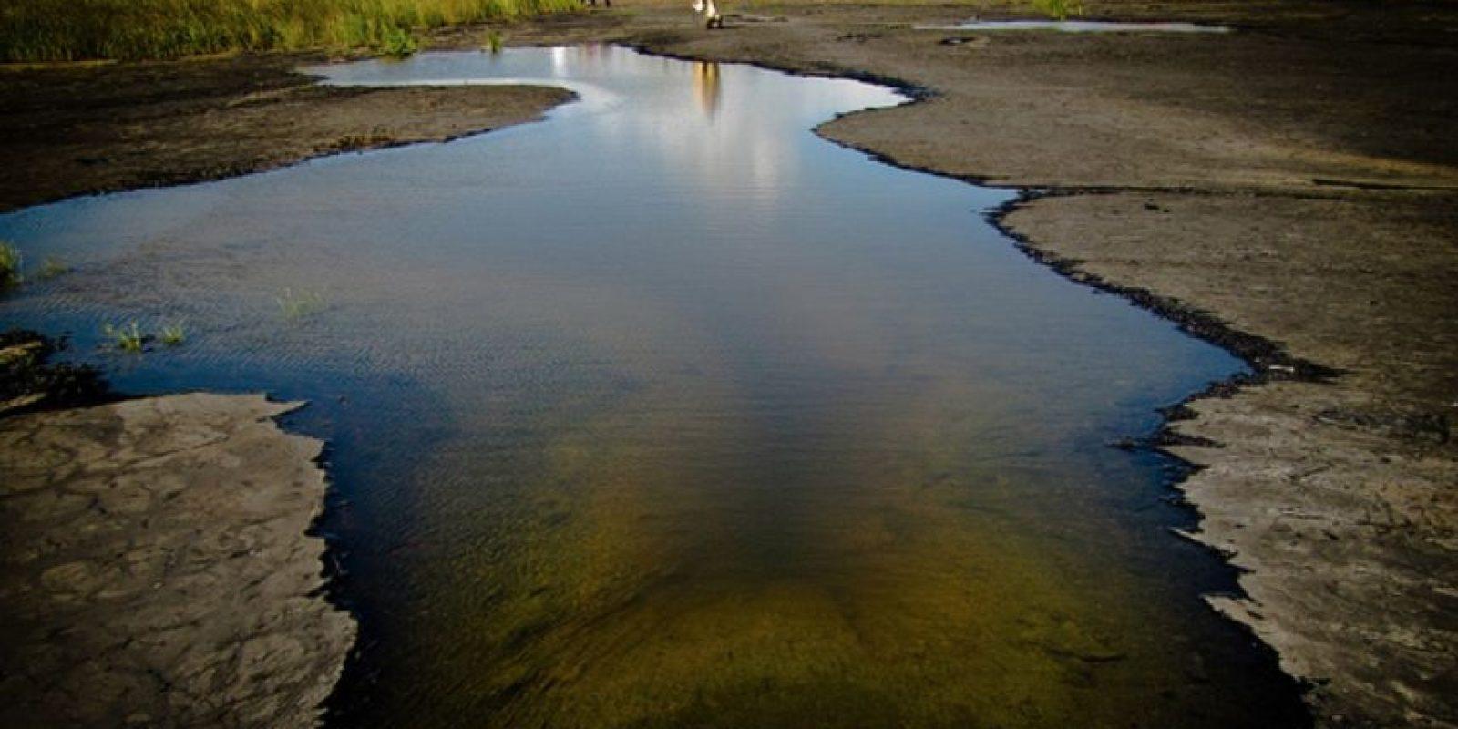 El lago de la Brea (Lago Pitch), Trinidad y Tobago. Foto:Wikimedia