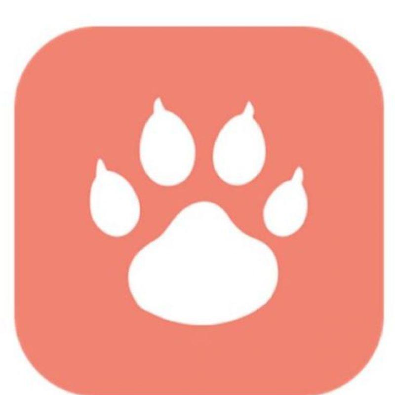 Tindog es la versión de esta aplicación exclusiva para personas con mascotas Foto:Tindog