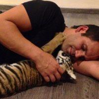 Hoy en día, Eduardo ha rescatado a decenas de felinos de una vida de terror y maltrato entre los circos, zoológicos, y criadores. Foto:vía instagram.com/blackjaguarwhitetiger