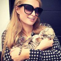 Su labor ha llamado la atención de celebridades como Paris Hilton, antigua vecina de Serio. Foto:vía instagram.com/parishilton