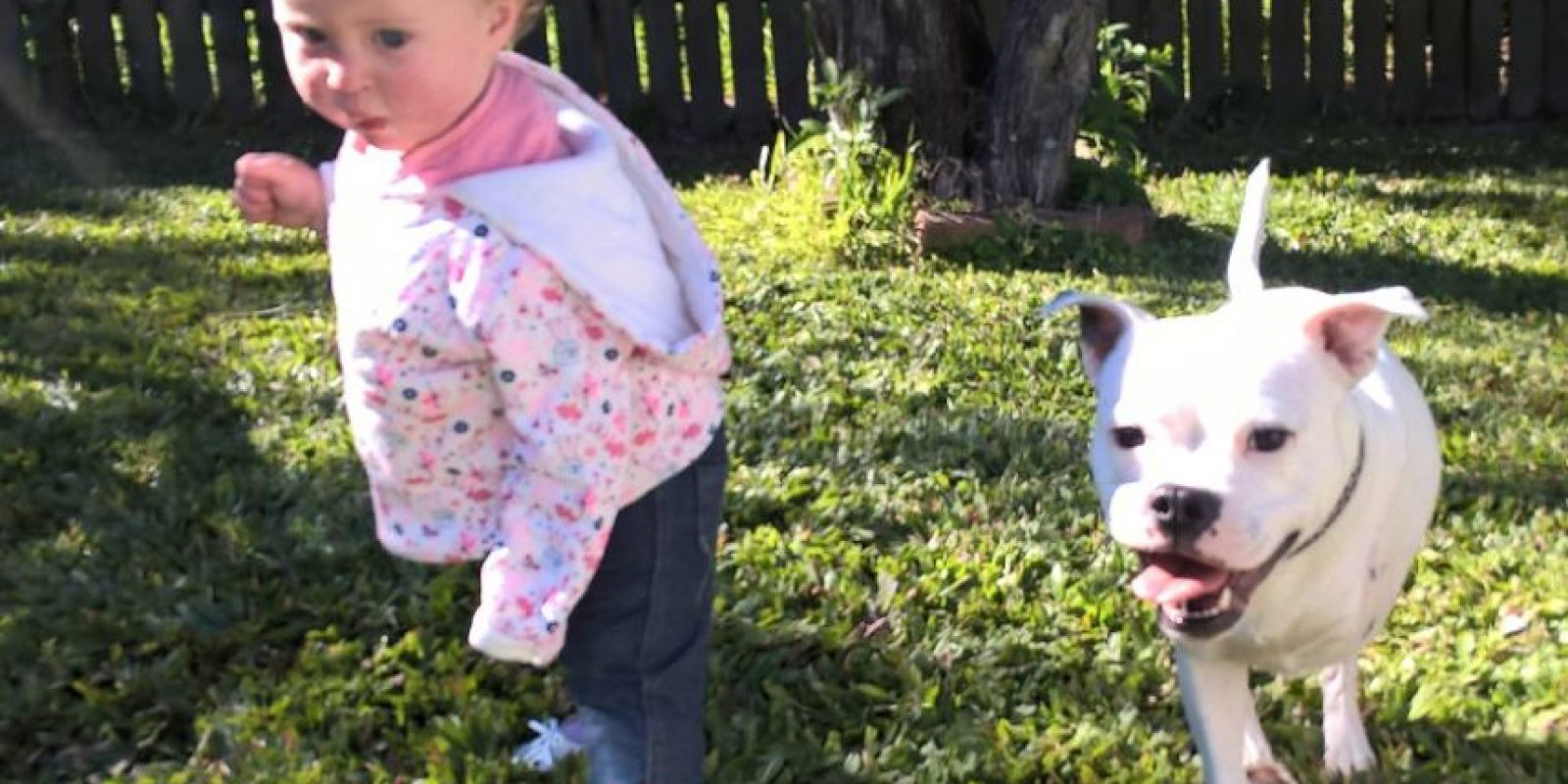 La madre de Ella lo adoptó porque vio que era perfecto para su niña. Foto:vía Facebook/The Escapades of Ella and Snowy