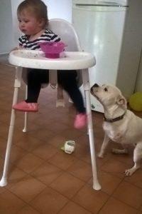 También tiene un año. Foto:vía Facebook/The Escapades of Ella and Snowy