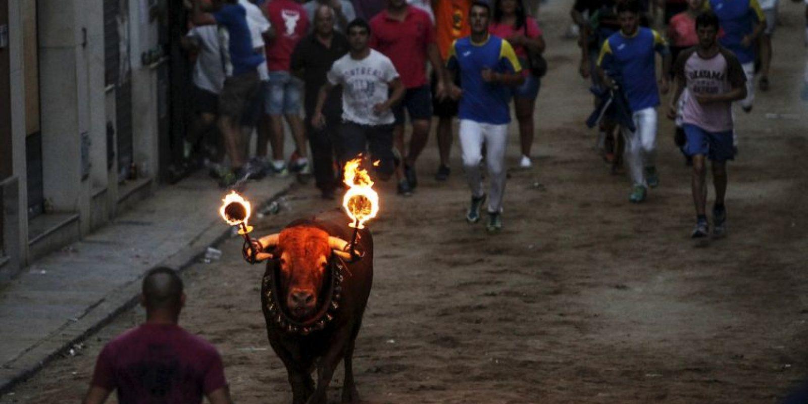 Toro en España. Foto:AFP