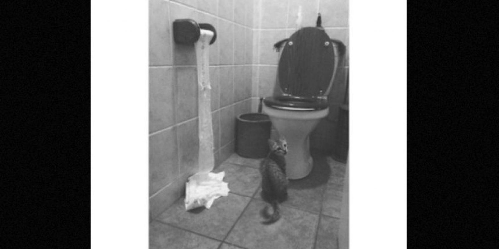 Algunos se dedican a jugar en el baño Foto:Twitter – Archivo