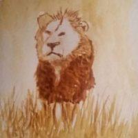 El estudiante también quiso aclarar que la tendencia de hacer de los animales algo romántico y darles nombres les parece a la gente de Zimbabue un circo absurdo. 800 leones se han matado de forma legal en Zimbabue en la última década. Foto:Vía Instagram/#Cecil