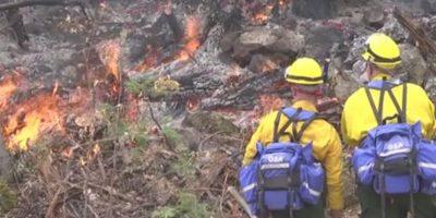 Tres hombres murieron al luchar contra los incendios en Washington, donde incendios han sido particularmente fuerte esta semana. Foto:AFP