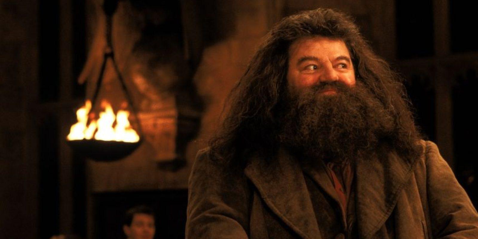 """Un usuario del portal Moviepilot insinuó que """"Hagrid"""" no puede realizar el """"Patronus"""" por falta de momentos felices. Foto:vía facebook.com/harrypottermovie"""