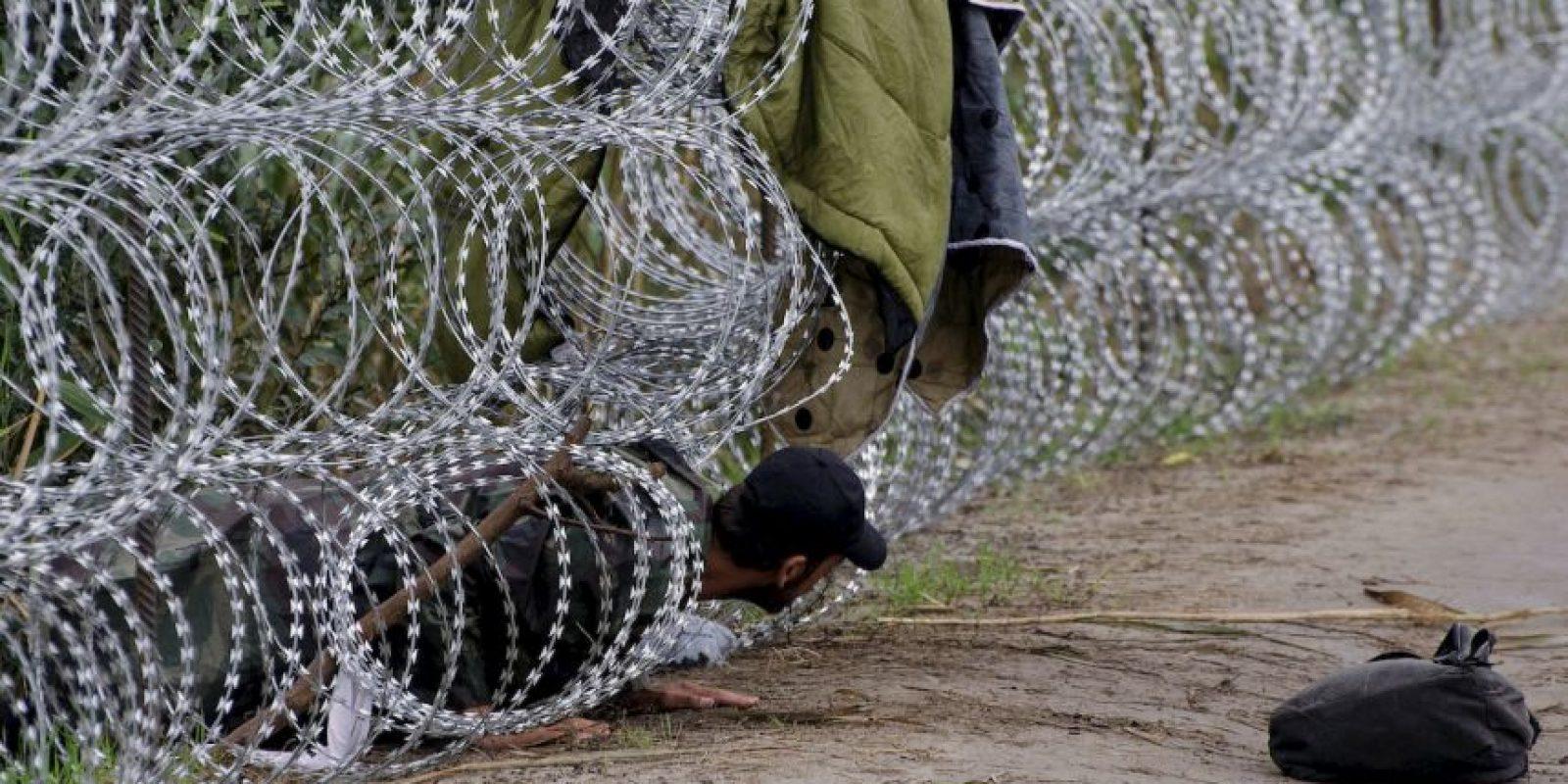 Migrantes en frontera de Hungría y Serbia. Foto:AFP