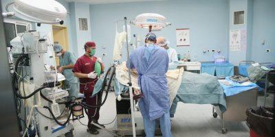 En el futuro podrían utilizarse órganos artificiales. Un equipo de especialistas del Hospital General de Massachusetts, en Boston, realizó una investigación con ratas de laboratorio. Foto:Getty Images