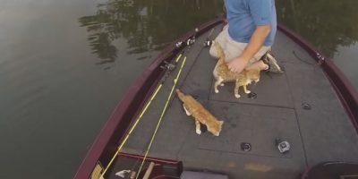 Los jóvenes no dudaron en rescatarlos. Foto:Vía Youtube Alabama Adventures