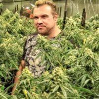 Advanced Nutrients es una empresa que desarrolla suplementos alimenticios de cannabis. Foto:Instagram/marijuanadon