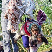Migrantes en la frontera de Hungría y Serbia. Foto:AFP