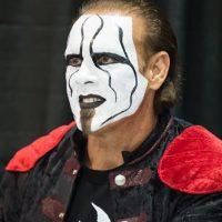 Tiene 15 campeonatos del mundo: 8 veces Campeón de Pesos Pesados de la WCW, 2 veces Campeón Mundial Pesado de la NWA, 4 veces Campeón Mundial Peso Pesado de la TNA y una vez Campeón Mundial Pesado de la WWA. Foto:Getty Images