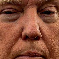 Donald Trump. Foto:vía Celebrity Closeup/Tumblr