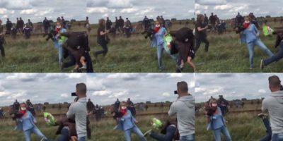Despiden a camarógrafa húngara por atacar a refugiados sirios
