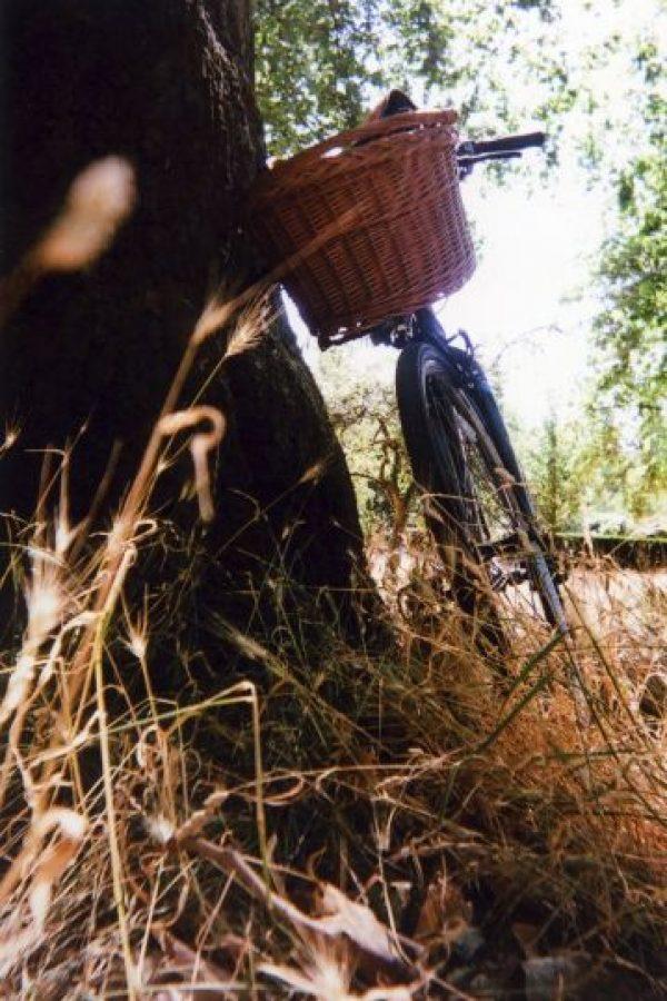 """""""Bicicleta estacionada"""": Es parte de la exhibición, pero no del calendario Foto:Cafe Art – Goska Calik"""