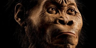 5 datos que deben saber sobre la nueva especie humana