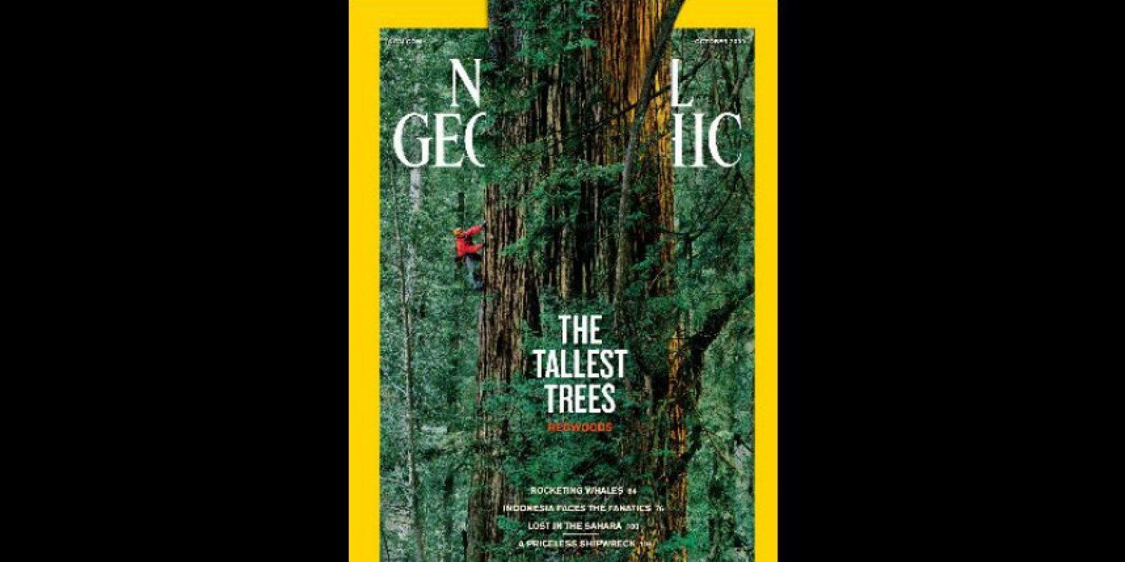 Octubre 2009. Tomó tres semanas, 84 imágenes y un sistema de cuerdas y poleas para hacer esta portada. Foto:Vía nationalgeographic.com