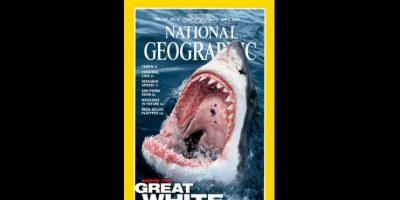 Abril 2000. El disparo que recibe un tiburón el la introducción perfecta para sobre las amenazas que enfrenta el depredador. Foto:Vía nationalgeographic.com