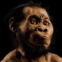 """El llamado """"Homo naledi"""", fue descubierto en Sudáfrica. Foto:Ap"""