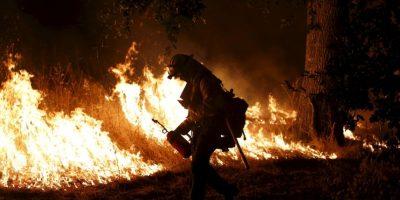 Más de 20 mil hectáreas se han quemado. Foto:Getty Images