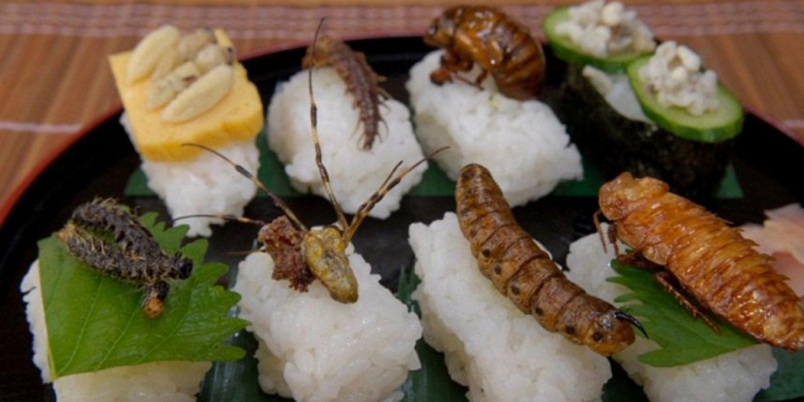 """""""La recolección de insectos y su crianza a nivel del hogar o la escala industrial puede ofrecer importantes oportunidades de subsistencia para las personas, tanto en países en desarrollo como en países desarrollados"""", indicó el estudio. Foto:vía foodiegossip"""
