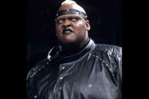 Viscera Foto:WWE
