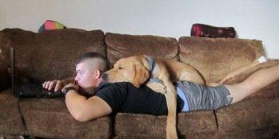 Para este perro resulta muy cómoda la espalda de su dueño. Foto:Pinterest