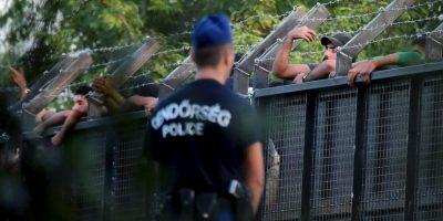 Policías en la frontera de Hungría y Serbia. Foto:AFP