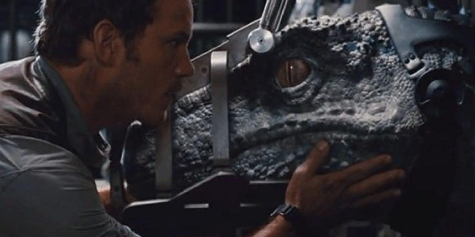 15. La distancia entre un hombre y el muro de los velociraptors varia la distancia dependiendo de las tomas de cerca y de lejos. Foto:Universal Pictures