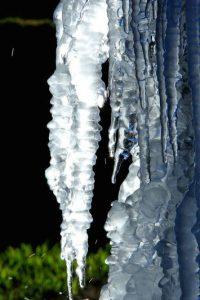 """1. """"Lo que pasa en Alaska nos afecta a todos. Es una señal de alarma"""". Foto:Getty Images"""