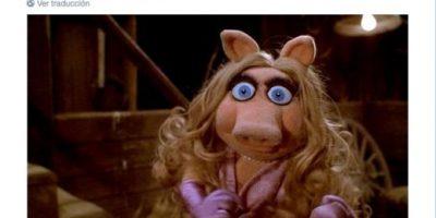 #PigGate: Líder mundial acusado de tener relaciones con una cabeza de cerdo