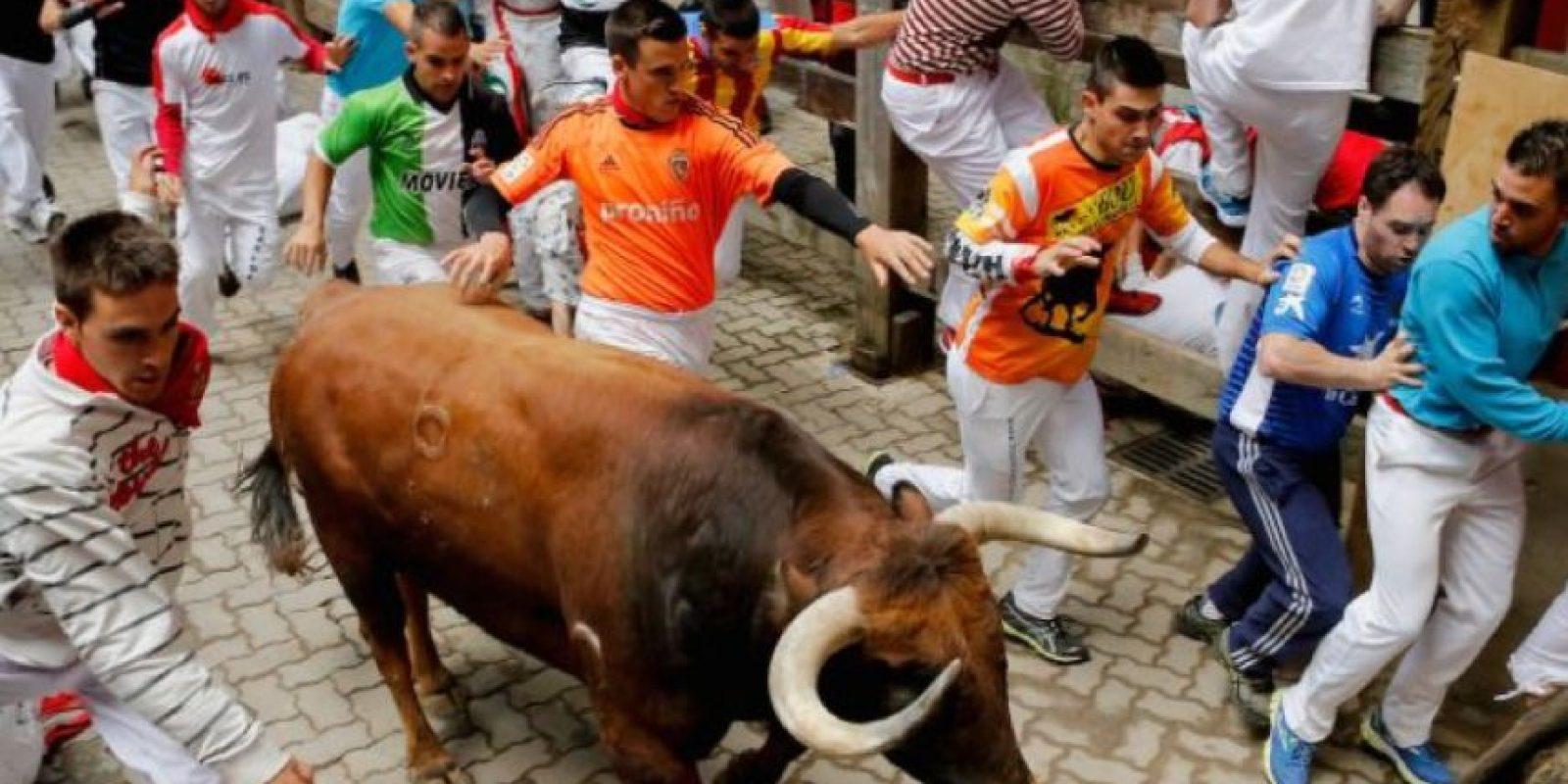 El Consejo Metropolitano de Quito en Ecuador evalúa una medida para prohibir espectáculos en los que se matan animales. Foto:vía Getty Images