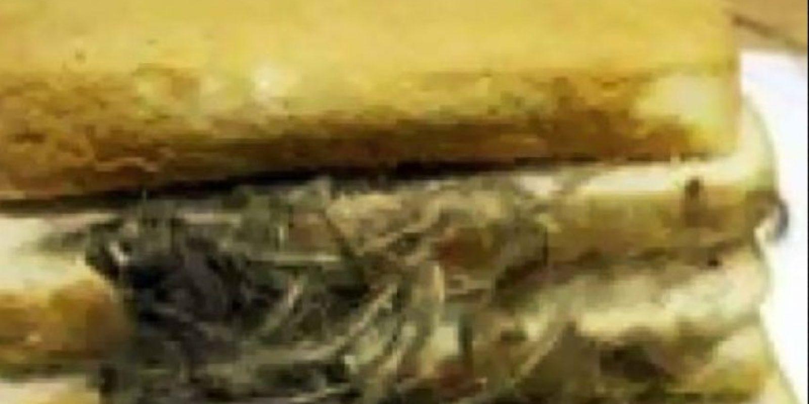 Pasto o lo que sea, acá. Foto:vía Imgur