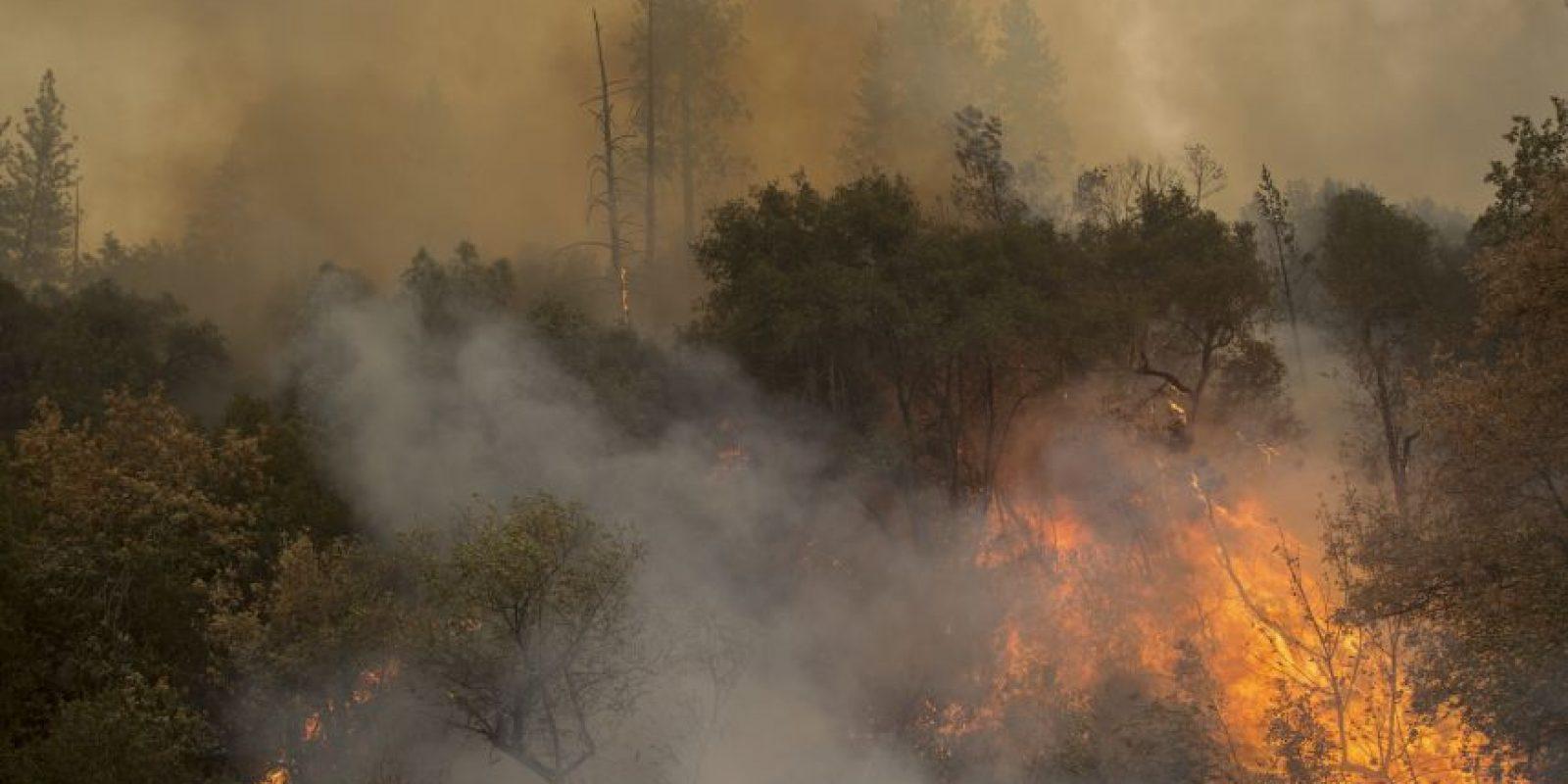 La Guardia civil detuvo al presunto culpable de 10 incendios. Foto:Getty Images