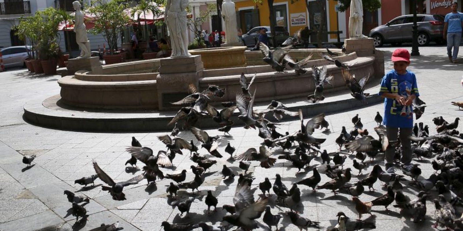 Los hechos ocurrieron en San Lorenzo, Puerto Rico. Foto:Getty Images