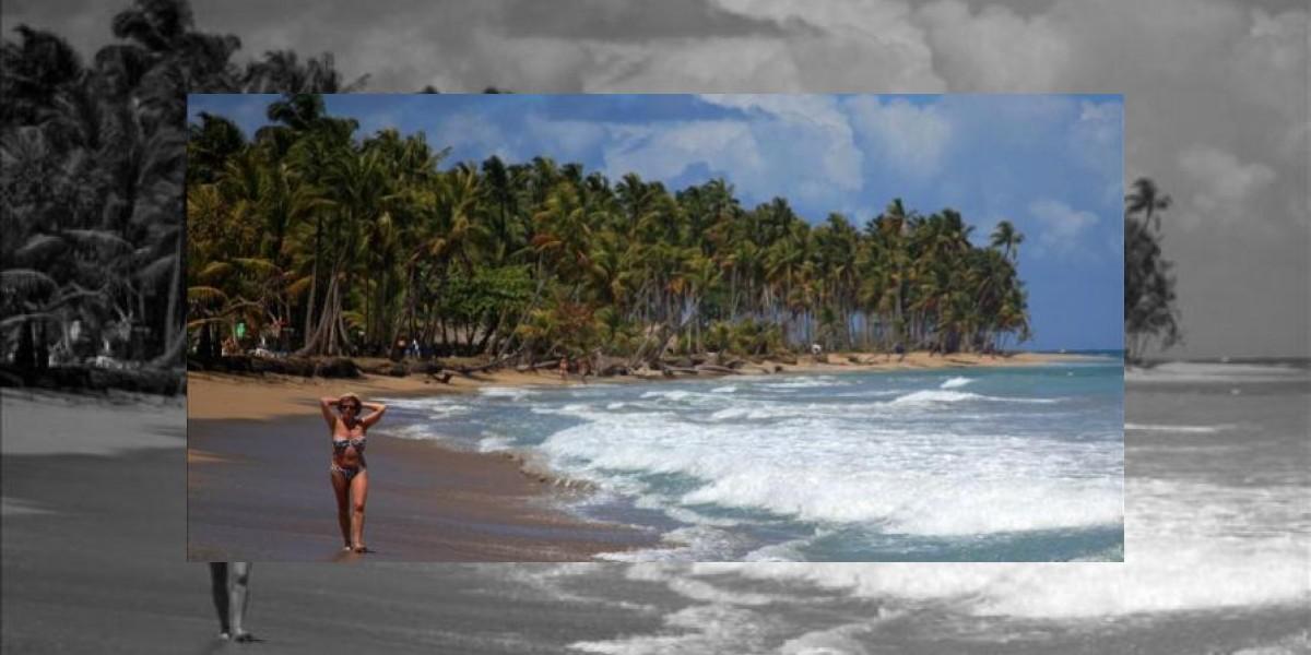 RD recibió más de 4 millones de turistas entre enero y agosto