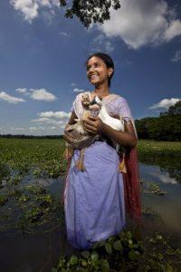 """El más importante es Kamadhenu, que significa """"Otorgadora de deseos"""" Foto:Getty Images"""