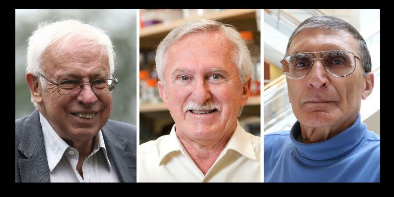 El sueco Thomas Lindahl, el estadounidense Paul Modrich y el turco-estadounidense Aziz Sancar ganaron el Premio Nobel de Química este año por sus estudios a mecanismos de reparación del ADN. Foto:AFP