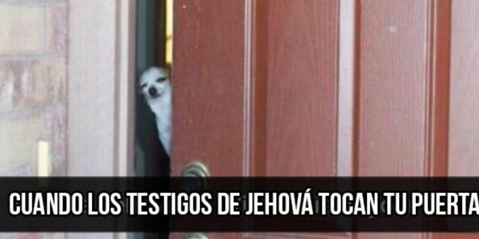 Doge es uno de los memes más populares. Foto:vía Twitter