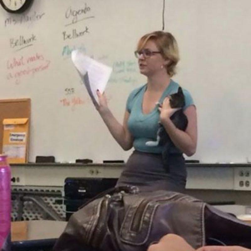 Esta profesora se encontró un gatito y dio clases mientras lo cargaba. Foto:Know Your Meme