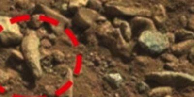 Un dedo fosilizado Foto:NASA