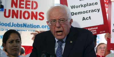 #BabiesForBernie: Así apoyan a este precandidato presidencial
