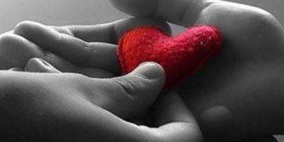 La donación de órganos y tejidos no se fija en la raza, religión o posición económica. Foto:Pixabay