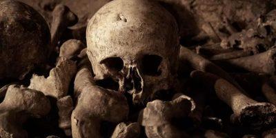 Los esqueletos serán parte de la experiencia. Foto:Airbnb