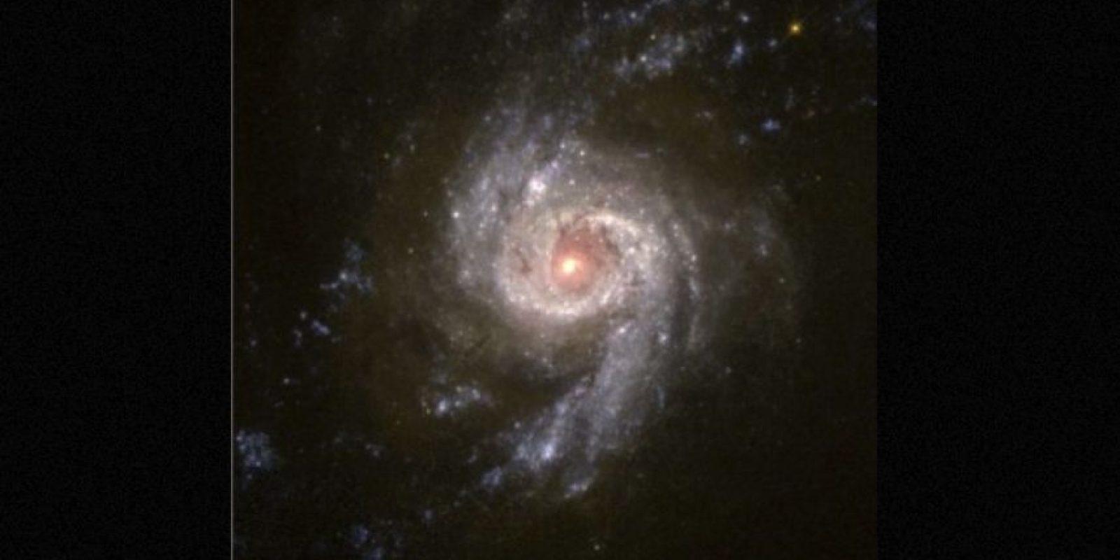 5. Los intentos del Instituto SETI Foto:Getty Images