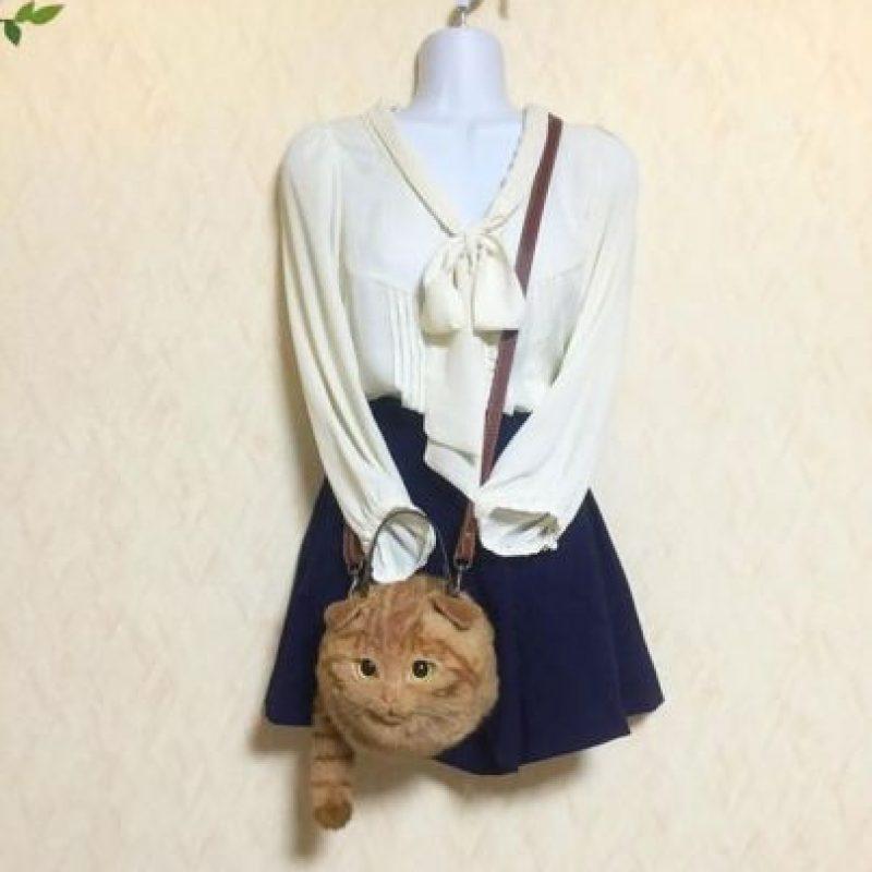 Foto:Vía Ameblo.jp